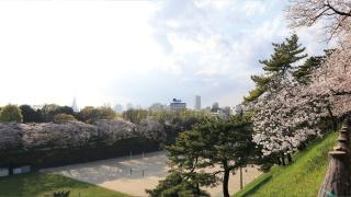 生活丨东京记忆