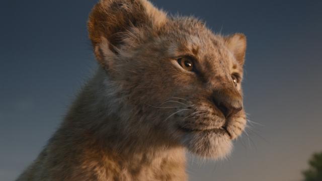 CGI版《狮子王》国内正式定档,7月12日电影院见