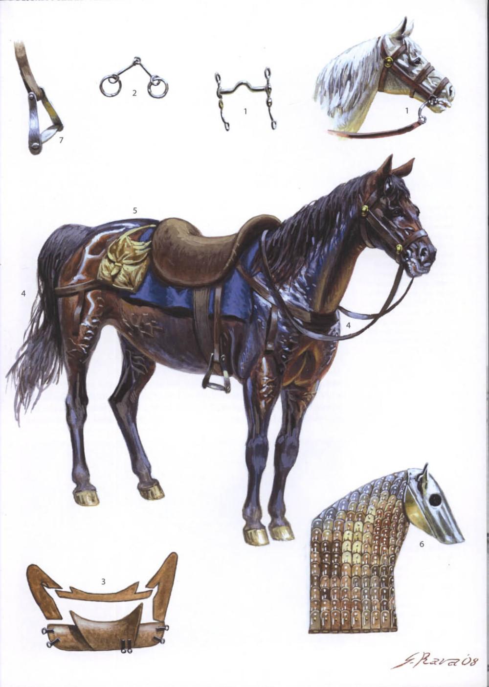 拜占庭战马的装备