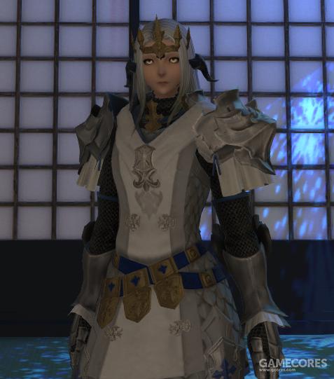 银胄团的正式甲胄,但是因为装备数量的缺失,只能作为高阶成员的装备品