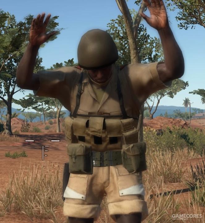 非洲佣兵团