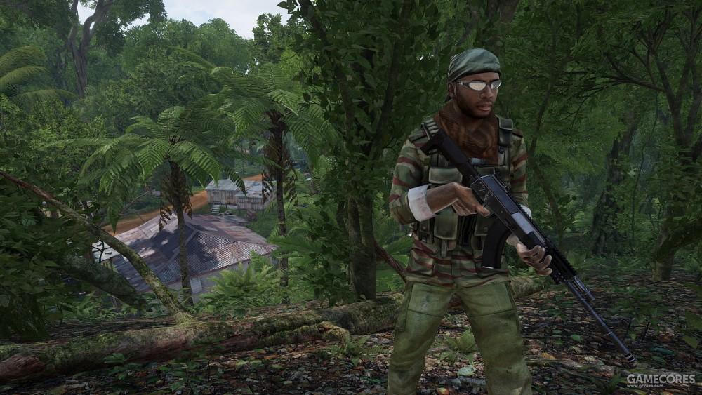 地平线群岛,一位使用AK-12的武装分子