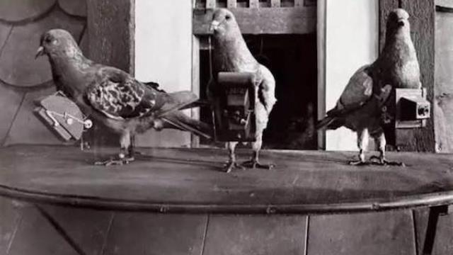 咕咕咕,八一八人类早期的航空摄影师和它们的航拍作品