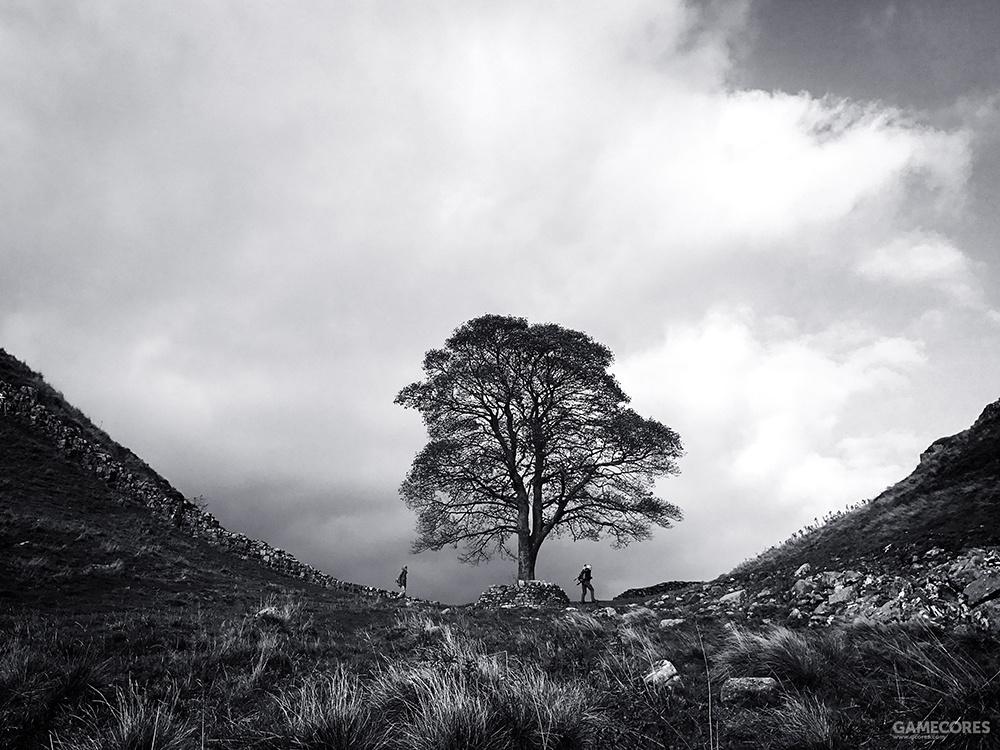 摄影师:Asuman Robson