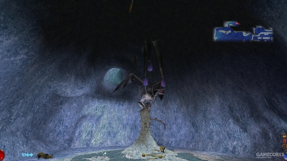 地下唯一的龙驻守在寒冰之洞