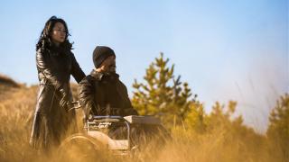 4部电影的横向乱评:江湖儿女在暴雪将至时于路边野餐欣赏白日焰火