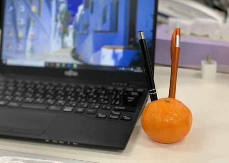 太过逼真,爱媛县柑橘型笔座在日本网络走红