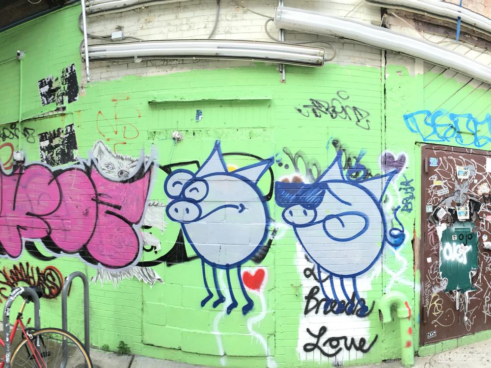 布鲁克林街区的涂鸦