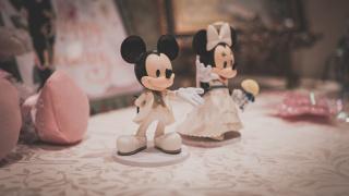 在迪士尼结婚是一种怎样的感受(下篇)——仪式与后记