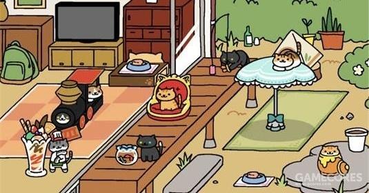 在你的后院放置道具,吸引各式各样的猫咪