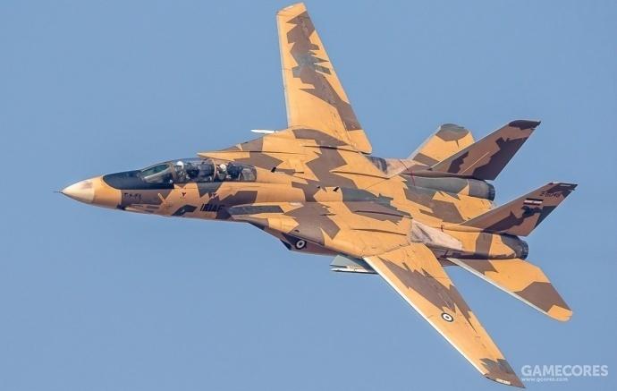 伊朗空军的枯叶迷彩F-14,让猫党和俄系党都很舒服
