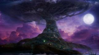 魔兽世界国家地理(六)泰达希尔-德鲁伊与狄安娜