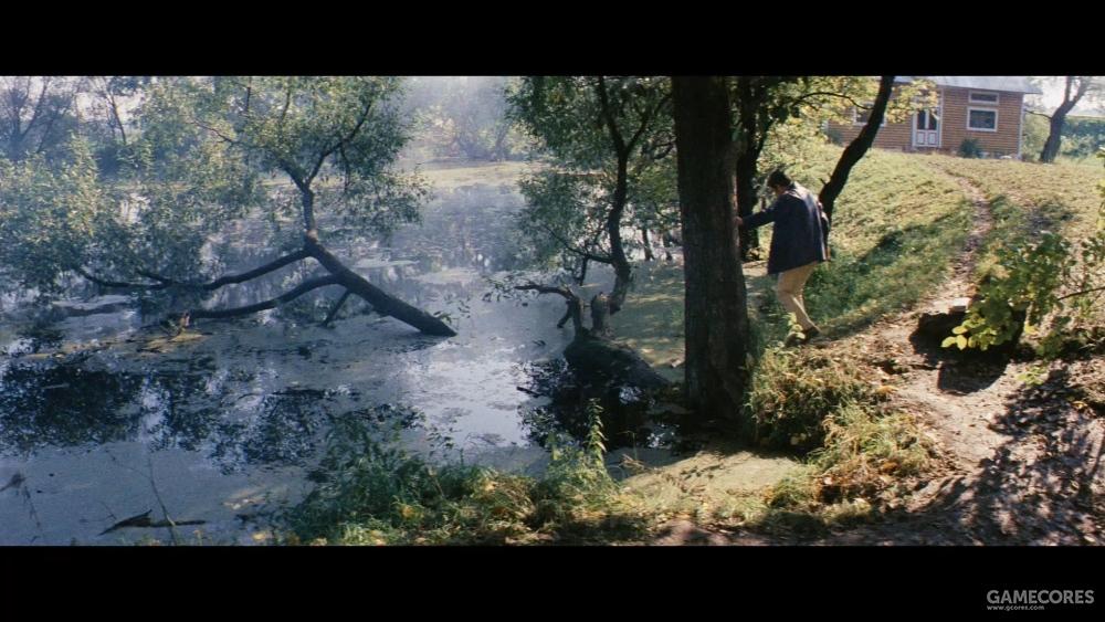 影片中随处可见的自然构图