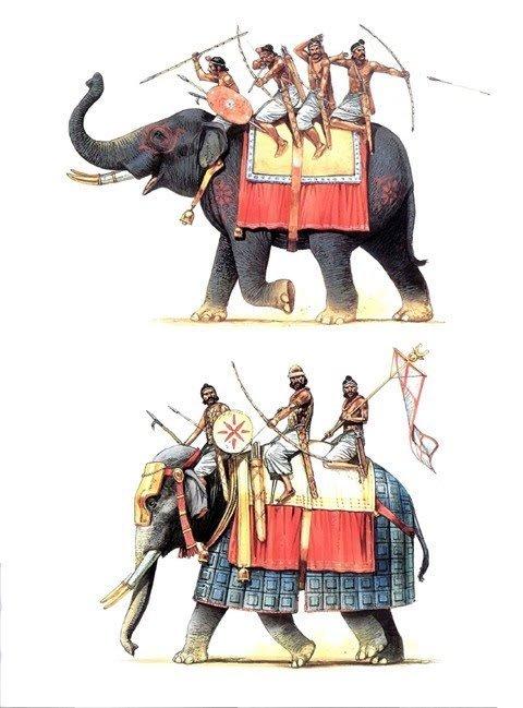 印度战象,当时还没有象鞍这东西