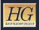 初版HG强袭LOGO为HG下标GUNDAM SEED