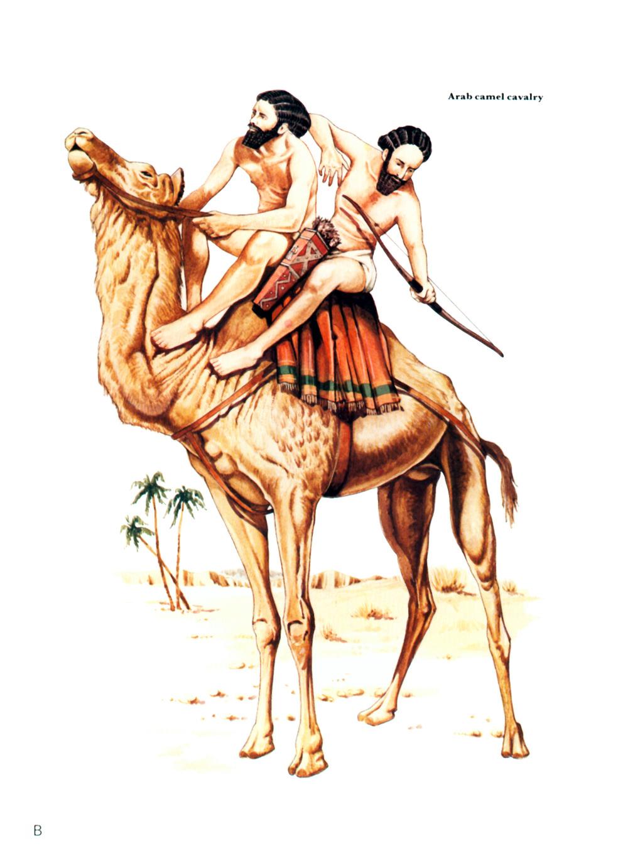 波斯军队中还有阿拉伯人的骆驼骑兵