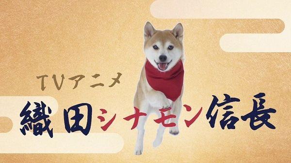 犬派的福音,动画《织田肉桂信长》先导PV公开