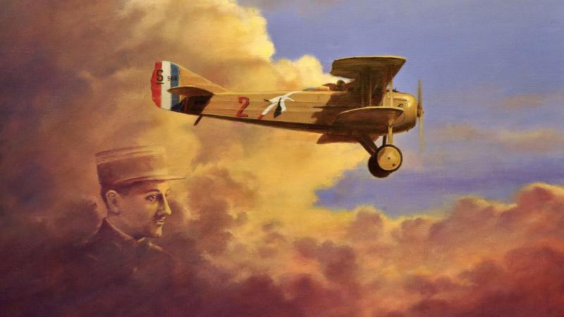 飞鹳骑士:法国空战英雄乔治·居内梅的故事
