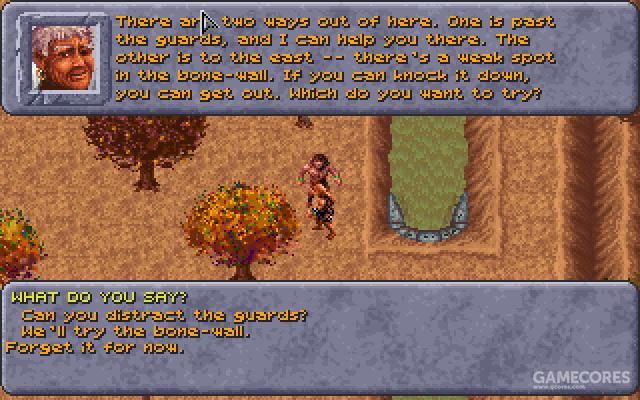 虽然我选择了溜门撬锁的方式离开种植园,但后来为了经验值把守卫也做掉了
