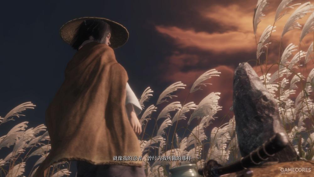 九郎深知这所有的一切都是狼作为人而做出的选择,不是身为忍者由命令驱使。