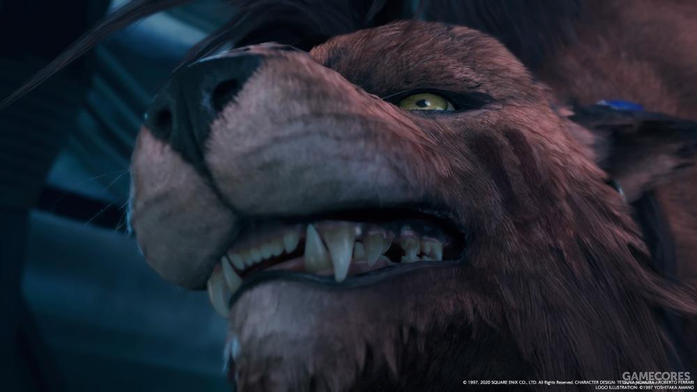 龇牙咧嘴,感到危险且紧张的野兽就是这样