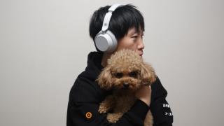 Surface 无线降噪智能耳机试用:教你如何用两千元免疫西蒙啰嗦