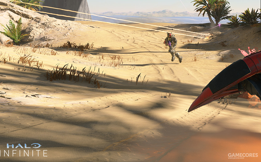 较为拉胯的沙地与植被贴图,环境光投射下来的阴影也显得颇有些奇怪。