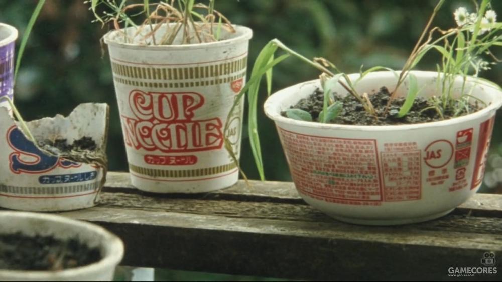 让我想起《无人知晓》里孩子们用泡面碗种的花
