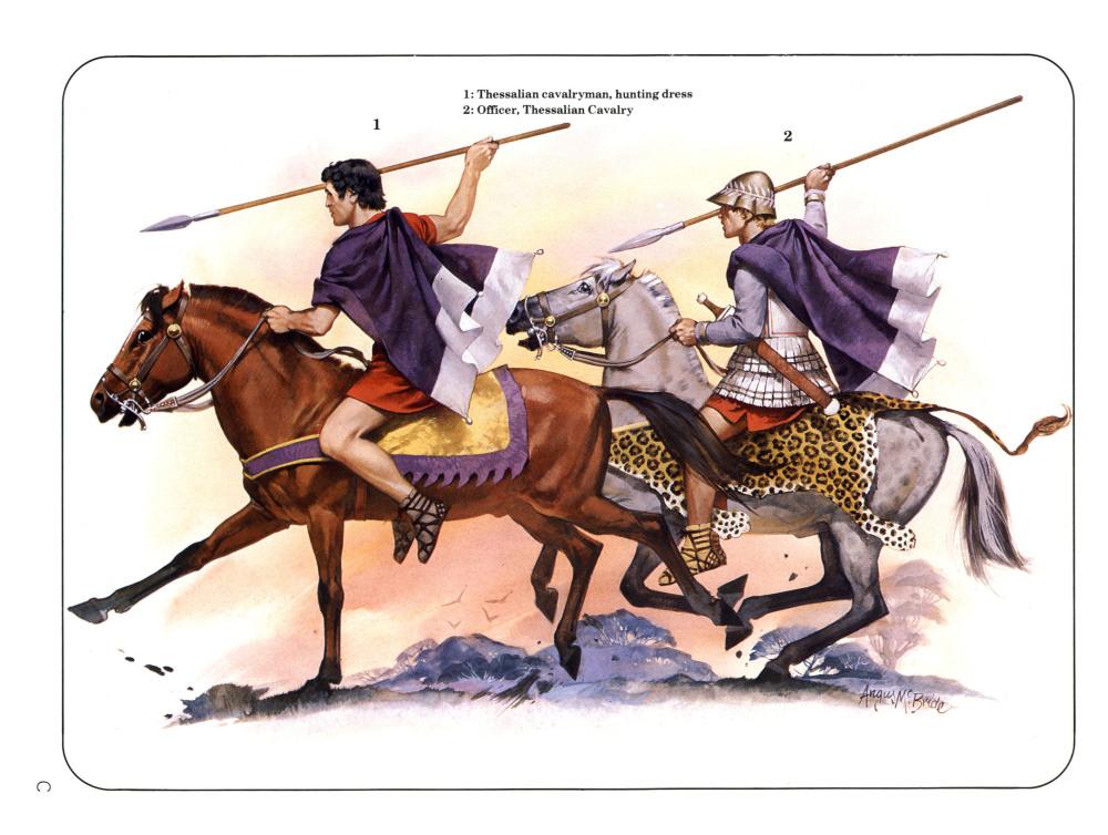 色萨利骑兵军官,他们的马嚼子是棕色的