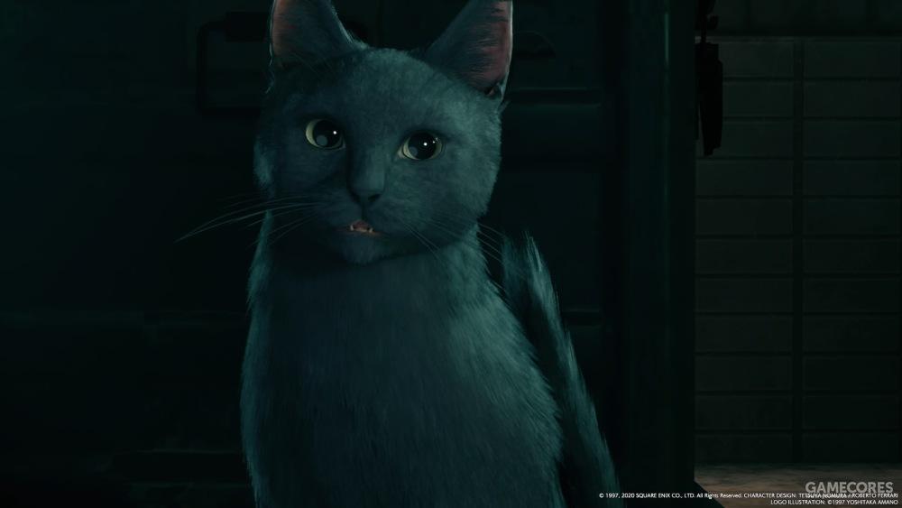 最后一个只黑猫给克劳德带路
