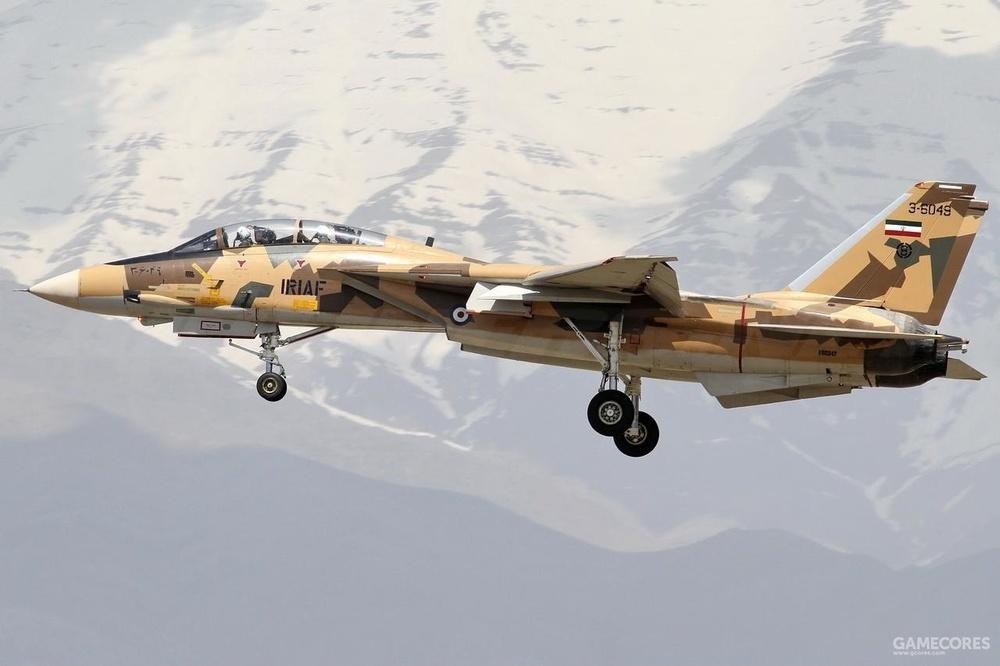 伊朗的波斯猫是现存唯一还在飞的雄猫了