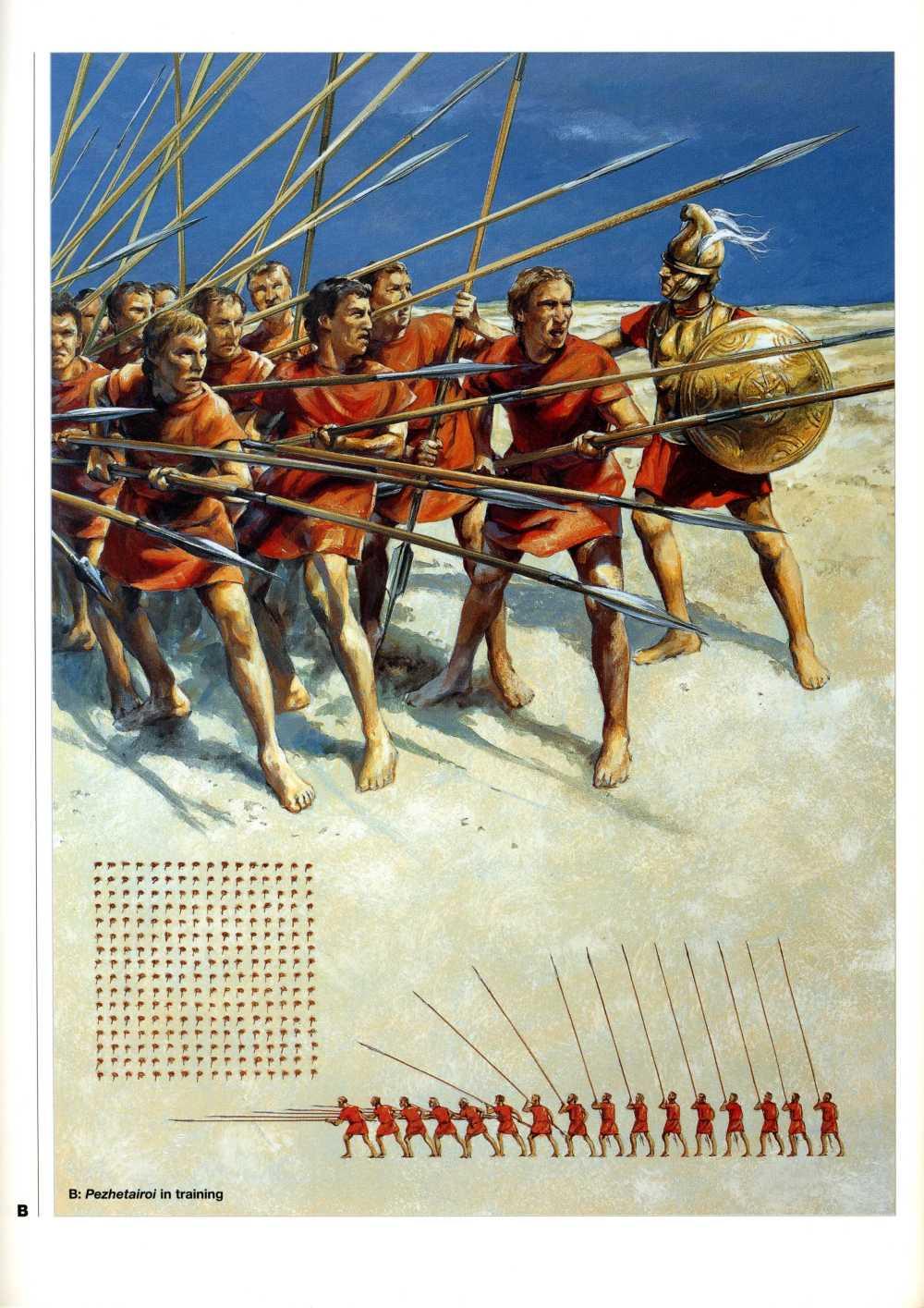 腓力二世的马其顿方阵发挥了重要作用。如图中所示,到了亚历山大时代,方阵前五排放平长枪,后五排把长枪斜向上举起,最后六排竖起长枪