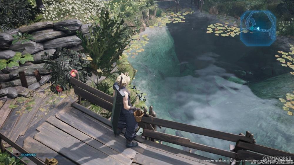 这水里还有鱼!万幸的是并不能钓鱼