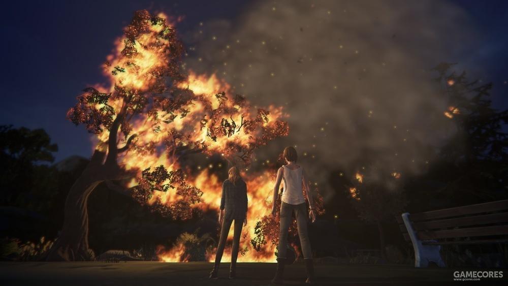 瑞秋点燃的火焰烧掉了整片山