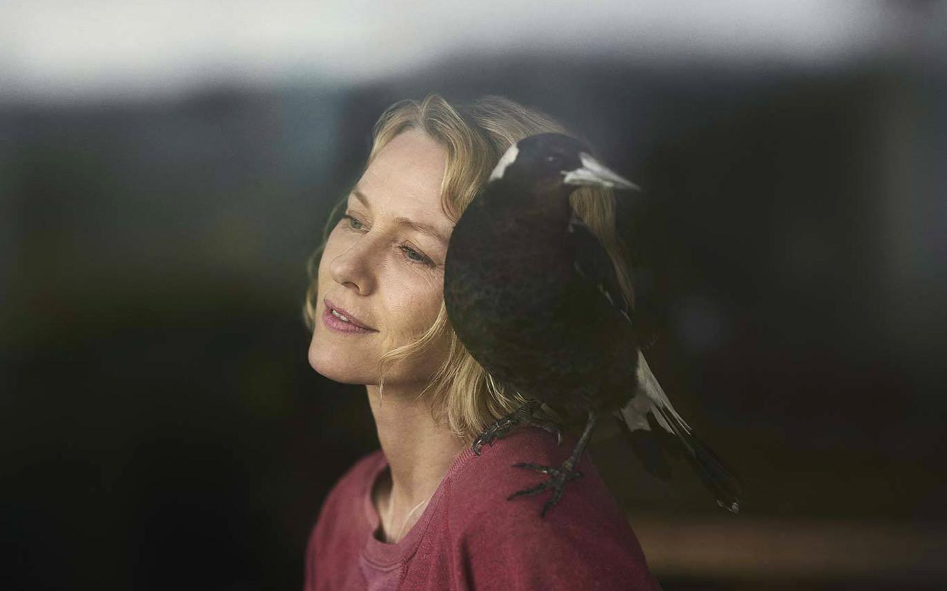 娜奥米·沃茨主演Netflix新片《企鹅·布鲁姆》发布首支预告