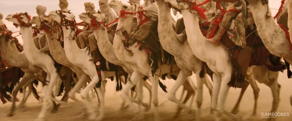 这些应该是阿拉伯骆驼骑兵