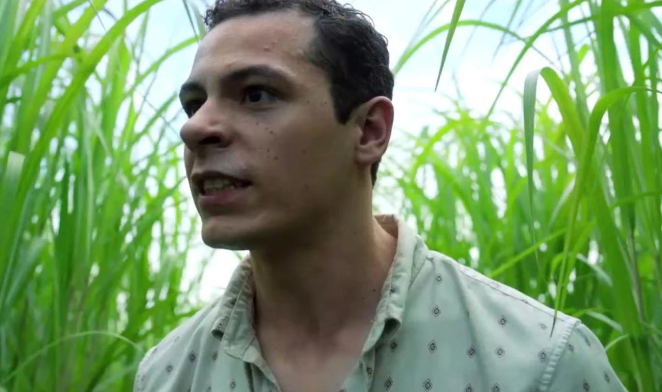 《心慌方》导演执导,史蒂芬·金改编新作《高草丛中》发布预告