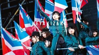 """欅坂46——""""沉默的多数""""中的""""不协和音"""""""