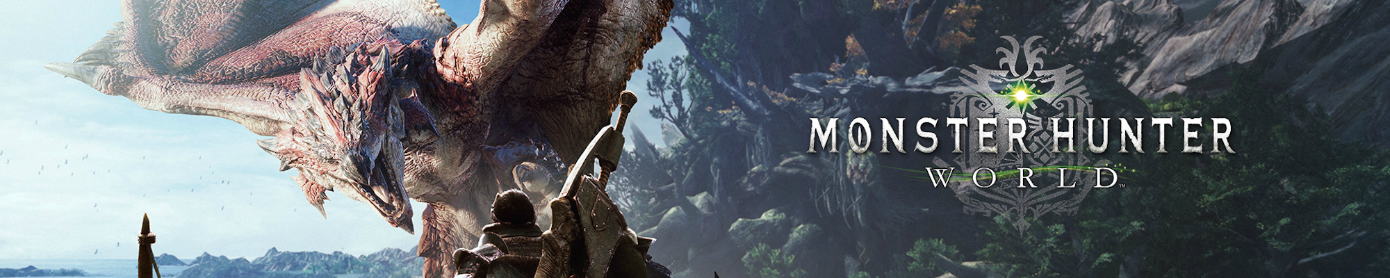 关于《怪物猎人:世界》,我们来聊聊因人而异的体验
