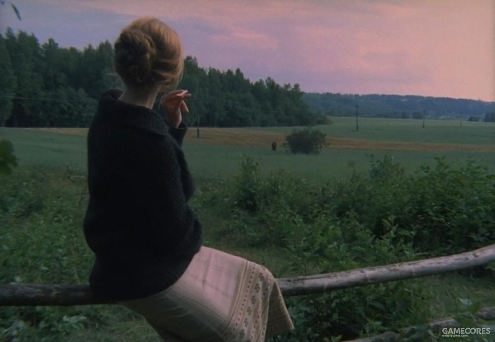 一个女人坐在栅栏上眺望远方