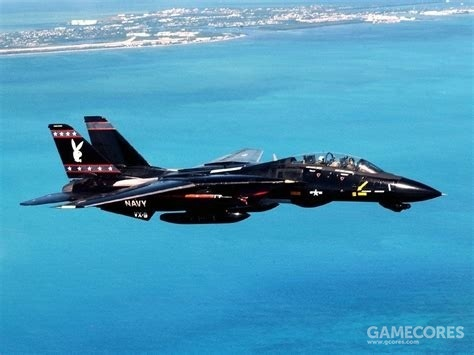F-14与花花公子进行联动